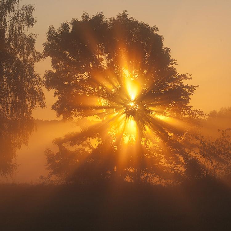 Sänd de vackraste tankar med solens strålar till alla världar.